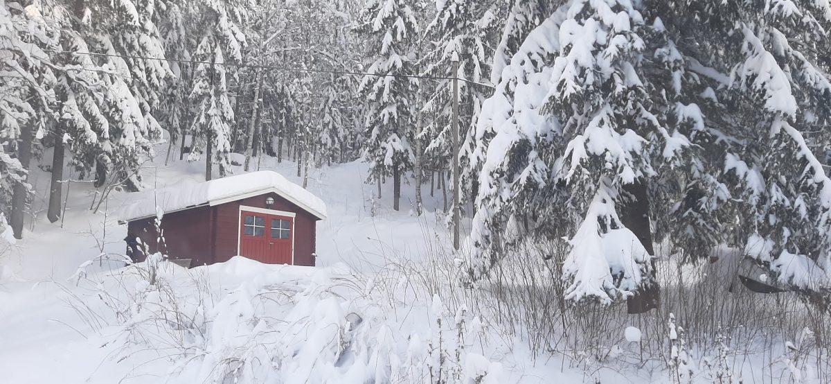 Kamavaja talvella